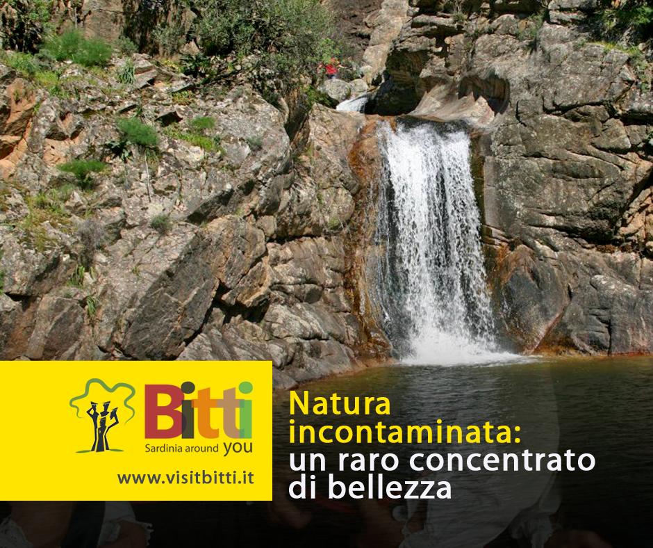 promozione turistica destination marketing visit bitti natura facebook